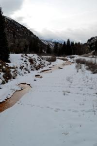 Muddy Creek and Mount Lamborn lead my way