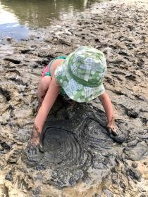 Marleigh's Mud Pies